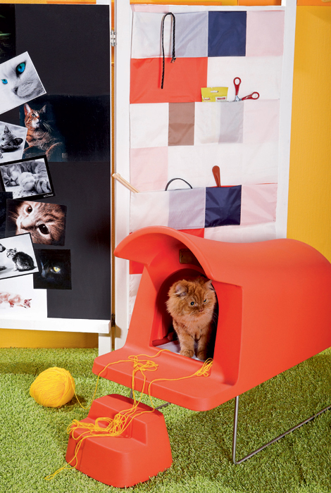 Pet Living Ideas