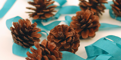 Pinecone Ribbon Garland