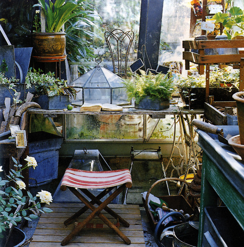 Potting Shed With A Cute Canvas Stool