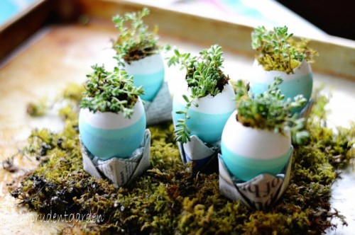 Easter egg garden in moss (via theprudentgarden)