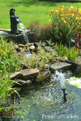backyard pond with liner (via davesgarden)