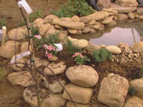 stone board pond (via diynetwork)