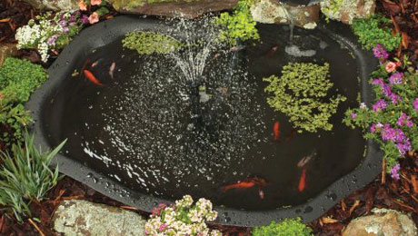 simple outdoor pond (via miy)