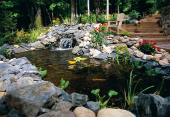 beautiful backyard pond | Shelterness