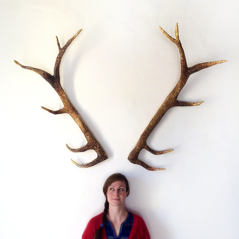 Picture of diy deer antlers for Antler decorations for home