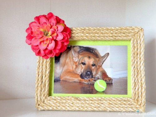 twine frames (via aprudentlife)
