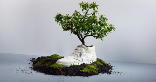 35 Ideas To Use Old Shoes As Planters