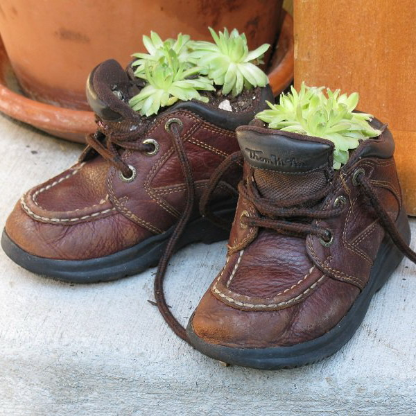 Shoes Planter