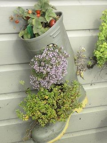35 Ideas To Use Old Shoes As Planters Shelterness