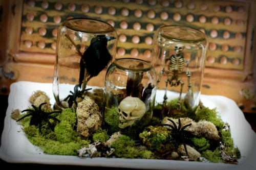 Halloween moss terrarium (via todayscreativeblog)