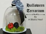 black skull and pumpkin terrarium