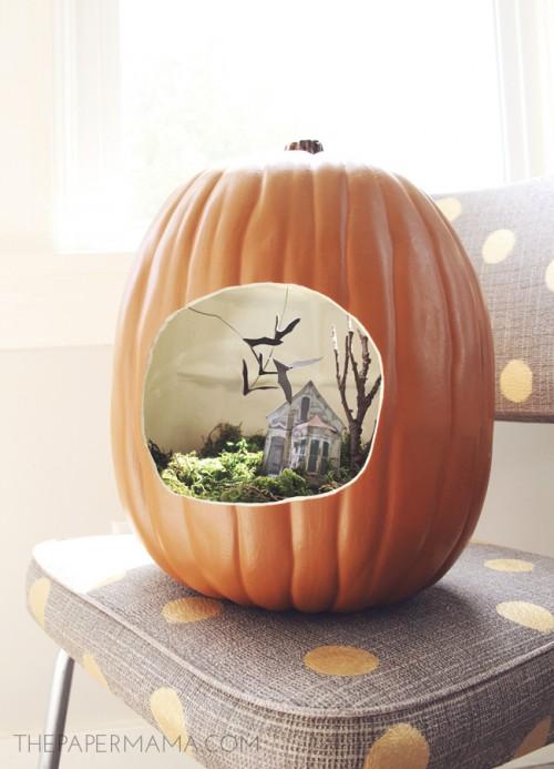 terrarium inside a pumpkin (via thepapermama)