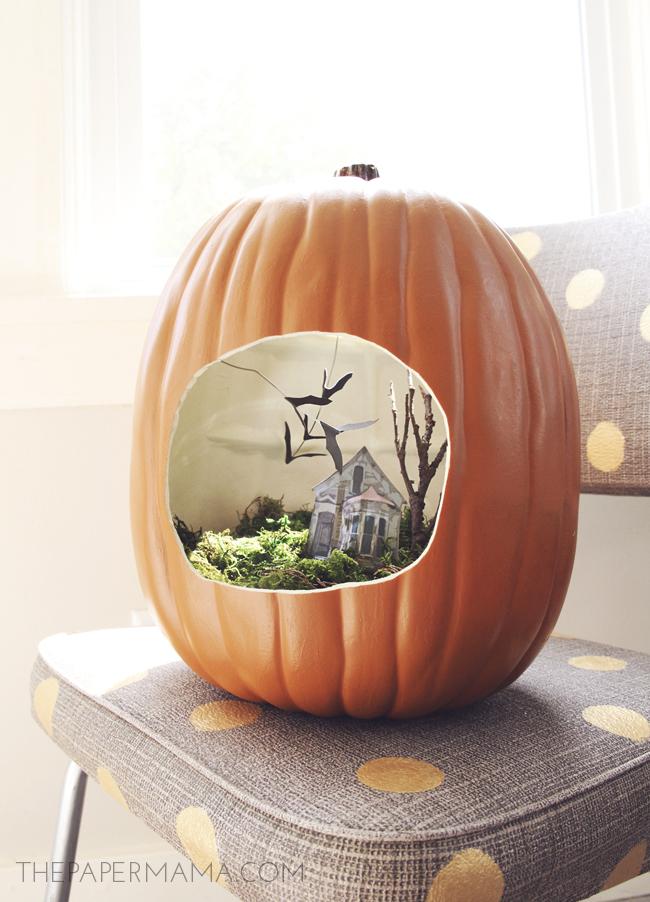 terrarium inside a pumpkin