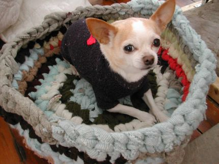 recycled sweaters pet bed (via craftstylish)