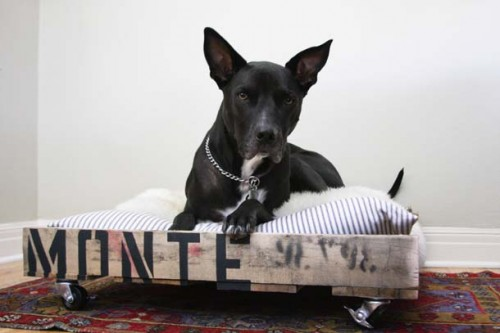 pallet dog bed (via camillestyles)
