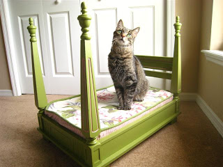 fabulous cat bed (via junkcamp)
