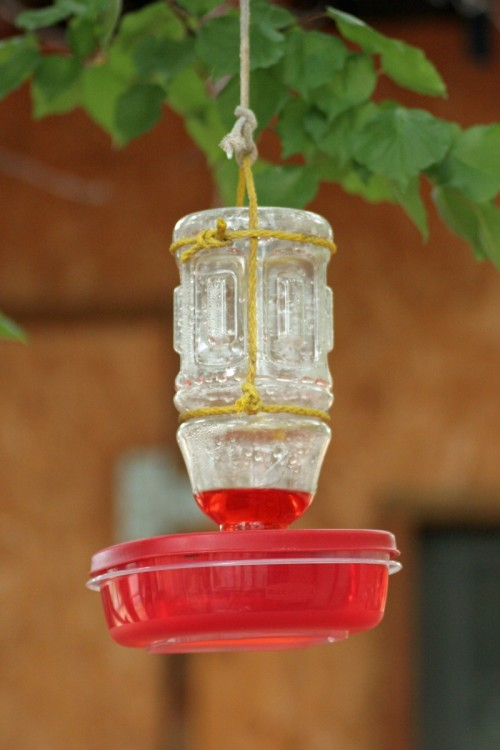 Simple Plastic Diy Bird Feeder