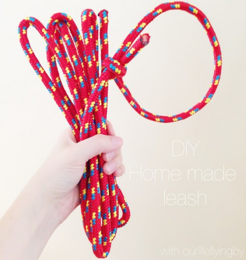 simple rope leash (via findingthedelight)