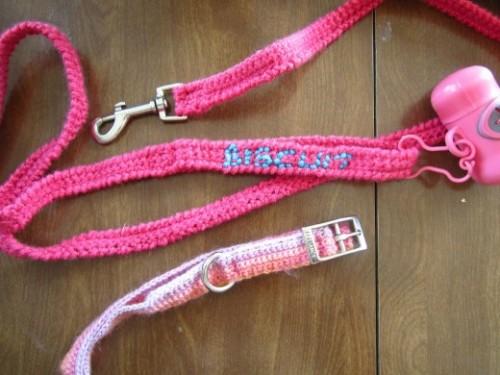 dog leash and collar (via followthestray)