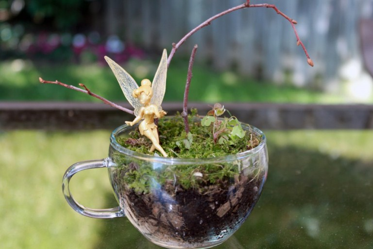 Small And Cool Diy Glass Terrariums