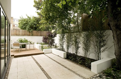 in small urban gardens it's always a good idea to occupy space near walls with thin trees
