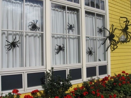 spiders of various sizes placed on the windows and walls are great and stylish Halloween decorations for outdoors