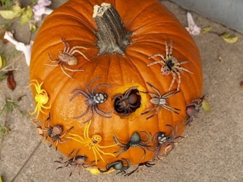 a pumpkin covered with spiders and with a hole plus some spiders inside the hole looks really scary