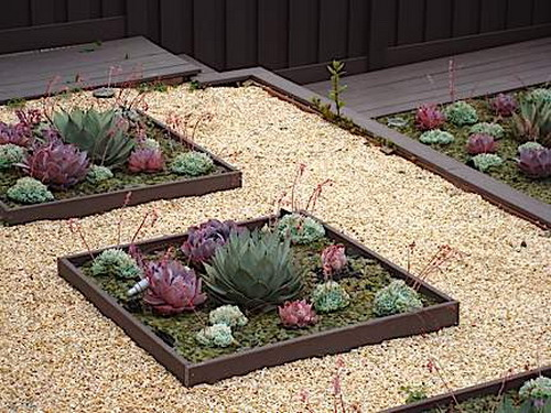 70 Indoor And Outdoor Succulent Garden Ideas Shelterness – Succulent Garden Design Plans