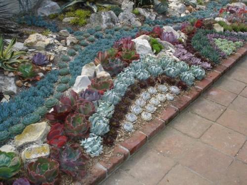 Succulent Garden Ideas Shelterness