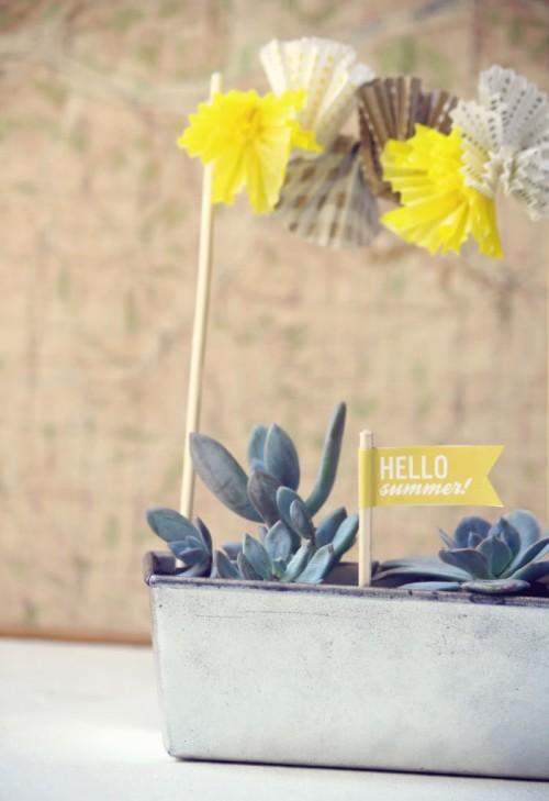 Summer DIY Succulent Garden
