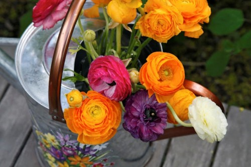 Surprise For Mother's Day Decorated Watering Cans