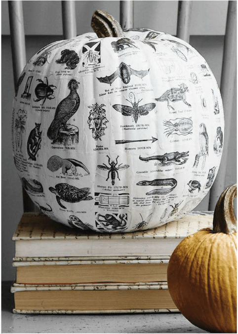 Textbook Decoupage Pumpkin