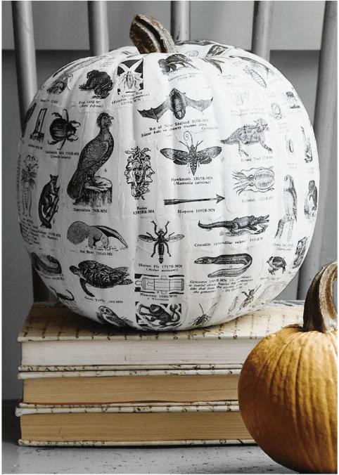 Textbook Decoupage Pumpkin
