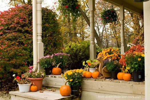 simple Thanksgiving porch decor with orange pumpkins and traditional fall blooms potted