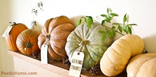 natural pumpkins with tags, pinecones and greenery for stylish rustic Thanksgiving decor