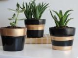 striped planter