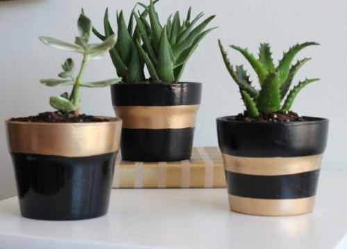 striped planter (via shelterness)
