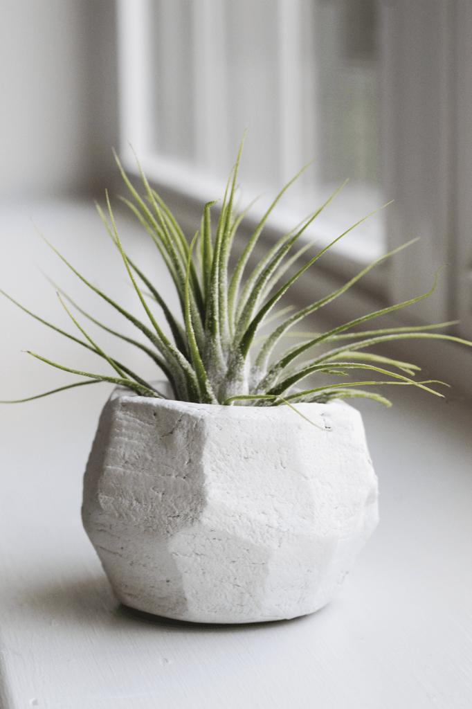 geo clay pot