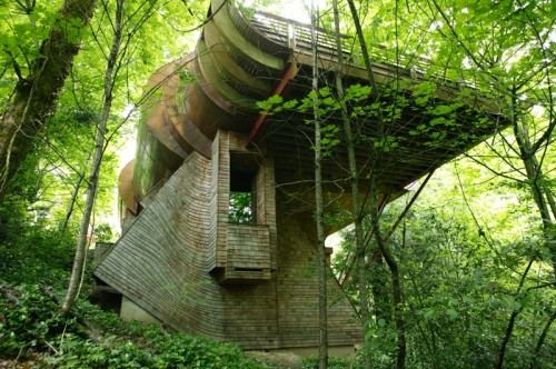 Unusual Forest Home From Natural Materials