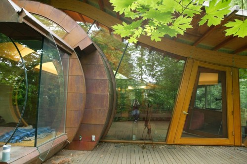 Unusual Forest Home