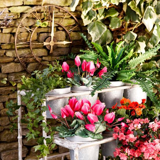 Vintage Garden Pots 101