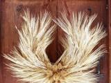 Wheat Thanksgiving Wreath