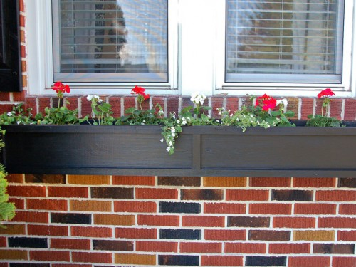 Charming DIY Window Box