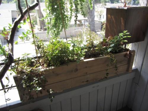 DIY Window Box Made From A Packing Crate (via aseriousgirl)