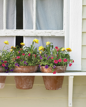 DIY Window Box Alternative (via marthastewart)