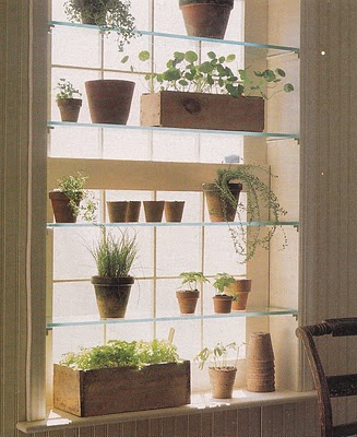 Herb Garden On A Window (via Roost Home)