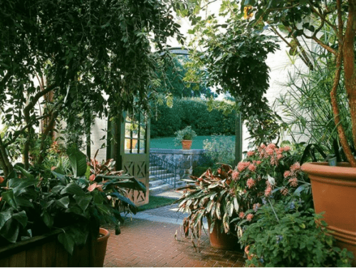 Winter Garden Design Ideas