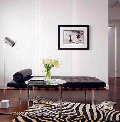 Awesome Zebra Interior Decorating