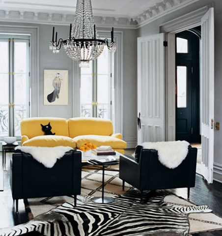 Zebra Interior Decorating