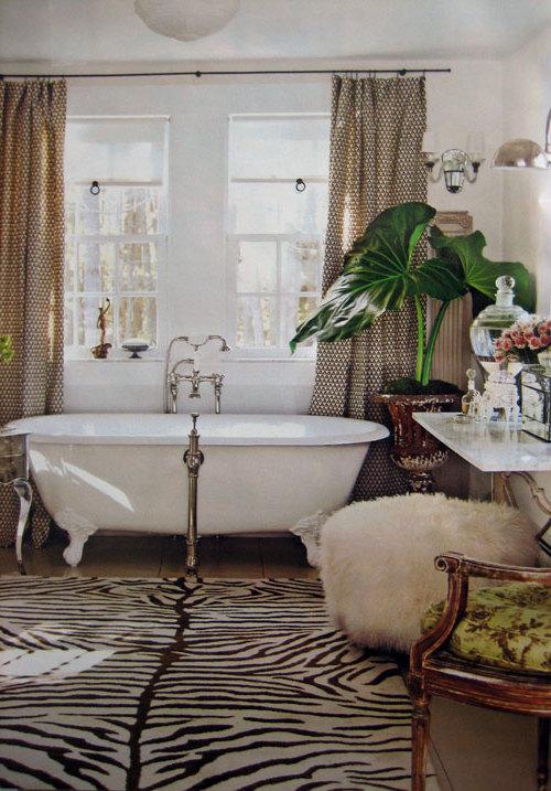 Marvelous Zebra Interior Decorating